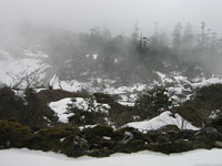 Gangtok ,Lachung and Darjeeling 2 Star Package For 8 Days,Gangtok