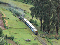 Bangalore, Mysore, Ooty and Kodaikanal Package - 8 Days,Bangalore