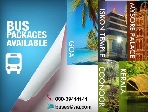 Bus Packages